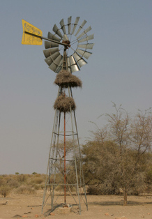 Windmill in Africa