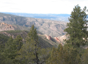 The Gila Wilderness Area of Gila National Forest