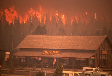 Yellowstone fire 1988