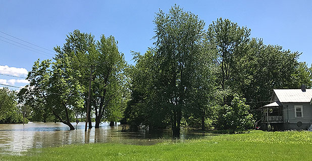 Mississippi River floodwaters near home