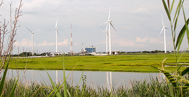 Wind turbines. Photo Credit: TruffShuff/Wikipedia