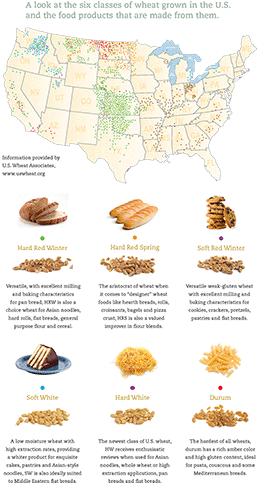 Types of Wheat in the U.S. Graphic credit: National Association of Wheat Growers
