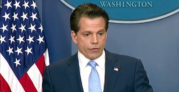 Anthony Scaramucci. Photo credit: C-SPAN
