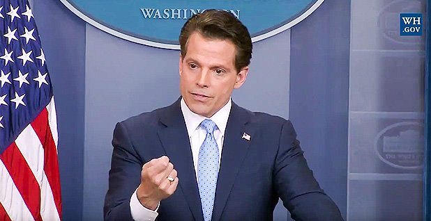 Anthony Scaramucci. Photo credit: White House/YouTube