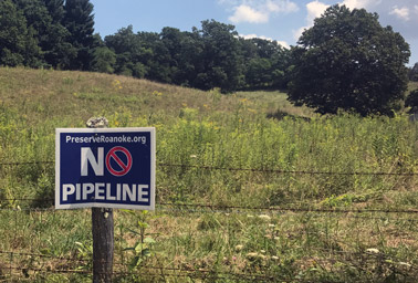 Sign in field. Photo: Ellen M. Gilmer/E&E News