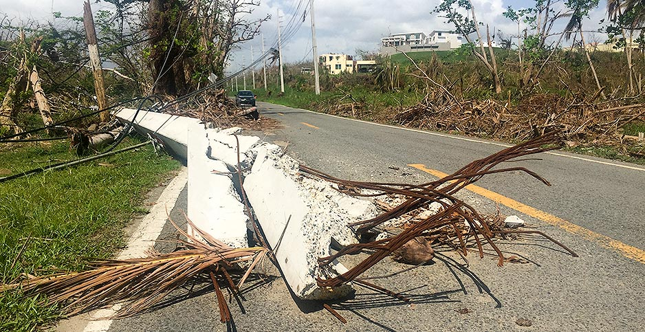 Puerto Rico power line down hurricane Maria. Photo credit: David Ferris/E&E News