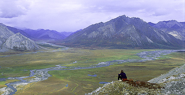 Arctic National Wildlife Refuge. Photo credit: Steve Chase/U.S. Fish and Wildlife Service/Flickr