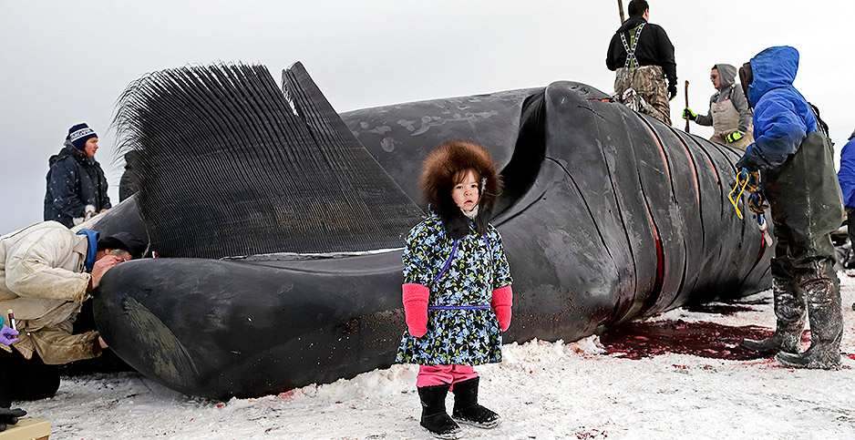 Whale hunting near Utqiagvik, Alaska. Photo credit: Gregory Bull/Associated Press