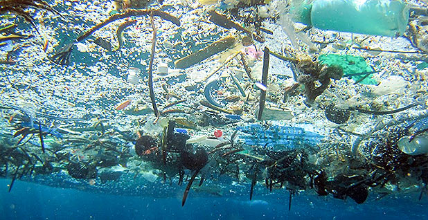 Ocean plastic debris. Photo credit: NOAA