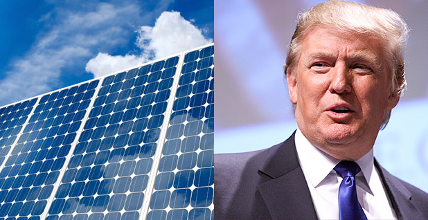 Solar panels and President Trump. Photo credit: Lawrence Berkeley National Laboratory(solar panels);Gage Skidmore(Trump)