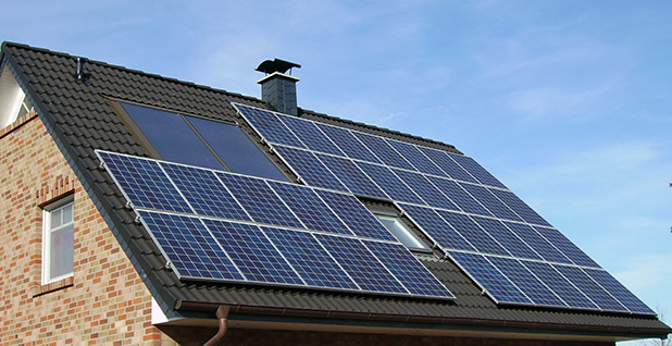 Solar panels. Photo credit: Wikipedia