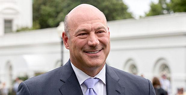 Gary Cohn. Photo credit: Evan Walker/Official White House Photo