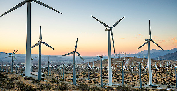 Wind turbines. Photo credit: Tom Brewster Photography/Bureau of Land Management/Flickr