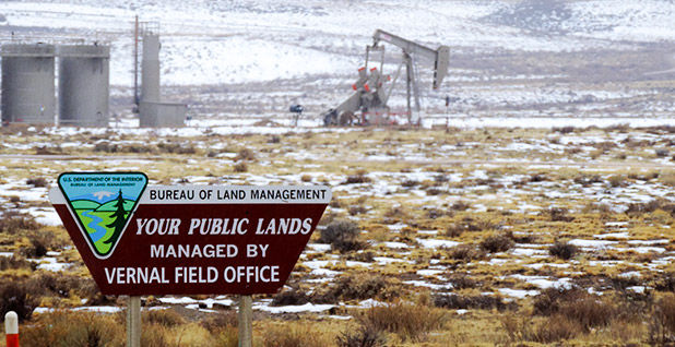 Oil rig on public lands. Photo credit: WildEarth Guardians/Flickr