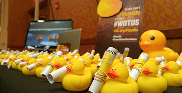 CLEAN WATER RULE: Farm Bureau floats \'rubber duck test\' in bid to ...