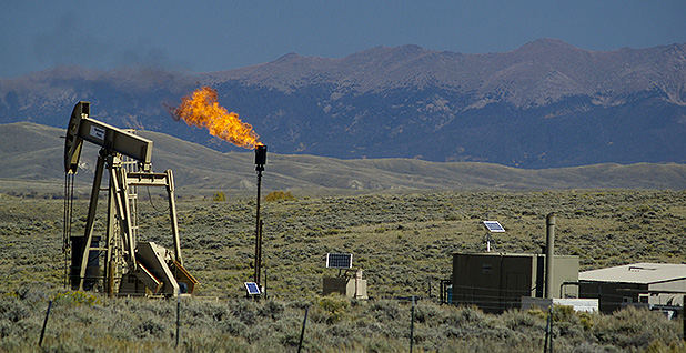 Methane emissions. Photo credit: WildEarth Guardians/Flickr
