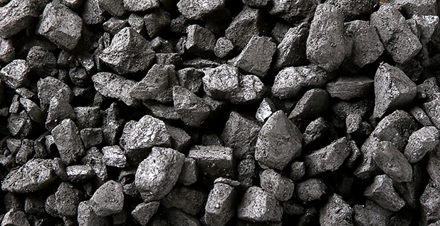 Coal. Photo credit: CSIRO/Wikimedia Commons
