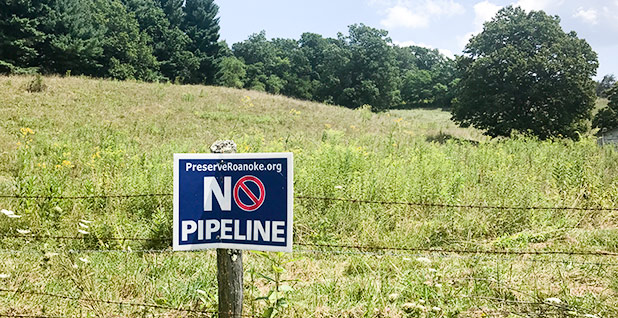 Mountain Valley pipeline protest sign. Photo credit: Ellen M. Gilmer/E&E News