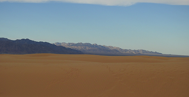 Palen Dunes. Photo credit: Basin and Range Watch