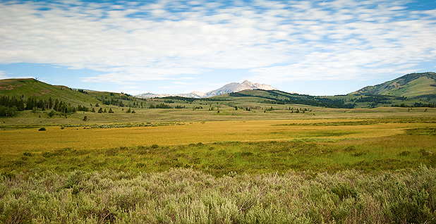 Electric Peak in Gallatin Range, Yellowstone. Photo credit: abhisawa/Flickr