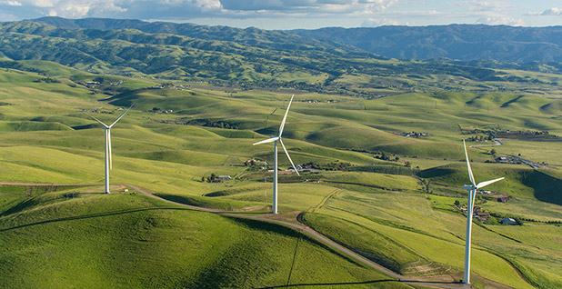NextEra Energy's Golden Hills Wind Energy Center. Photo credit: NextEra Energy