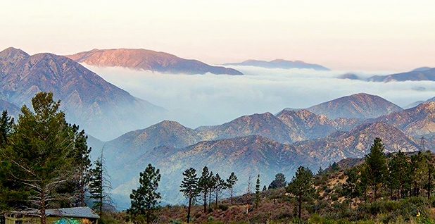 Angeles National Forest in California. Photo credit: U.S. Forest Service/Wikipedia