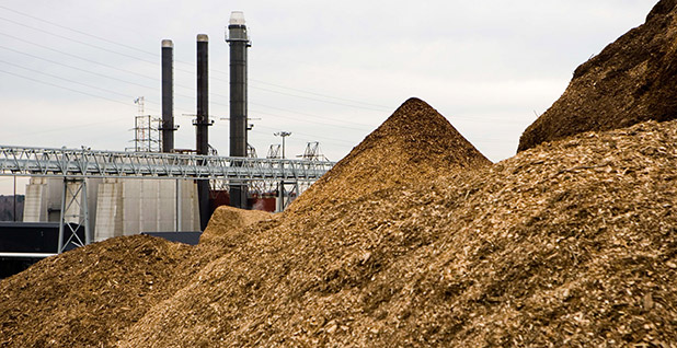 Large piles of wood chips with a conveyor belt in the background are seen at biomass plant in New Hampshire. Photo credit: PSNH/Flickr