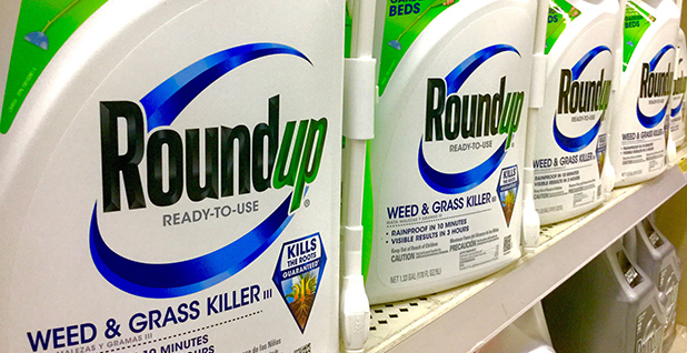 Roundup bottles. Photo credit: Mike Mozart/Flickr