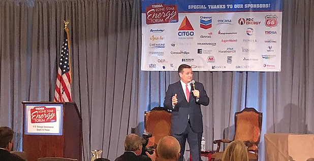 Ted Cruz. Photo credit: @TXOGA/Twitter