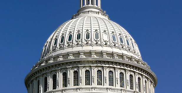 Capitol dome. Photo credit: Andreas Praefcke/Wikipedia