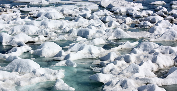 Patches of sea ice in a shallow region of the Arctic Ocean Photo credit: NASA ICE/Flickr