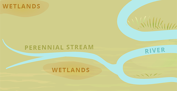 Wetlands graphic credit: Claudine Hellmuth/E&E News