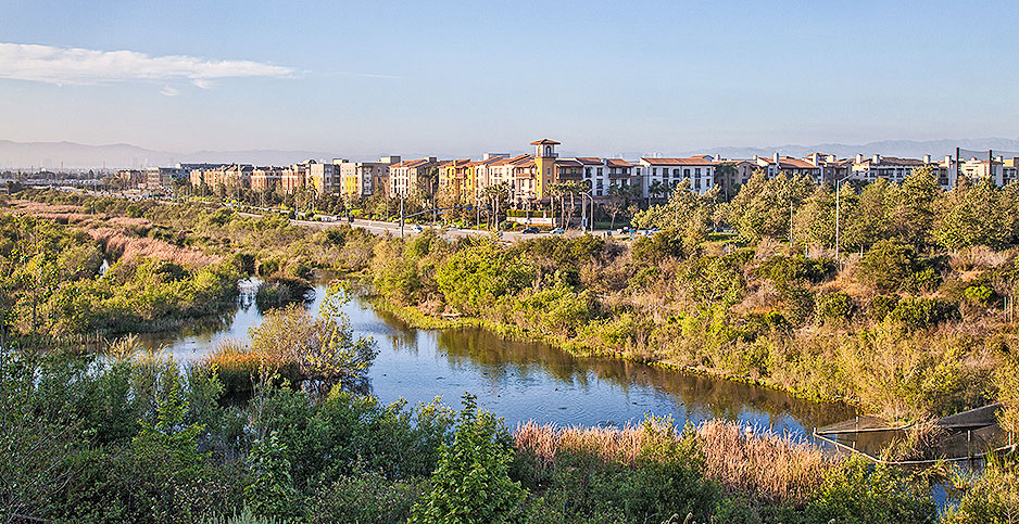 Ballona wetlands. Photo credit: Peter Bennett/Citizen of the Planet/Newscom