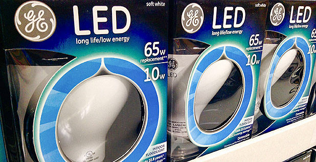 LED lightbulbs. Photo credit: Mike Mozart/Flickr