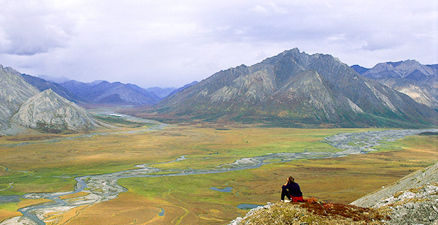 ANWR. Photo credit: Fish and Wildlife Service/Wikipedia