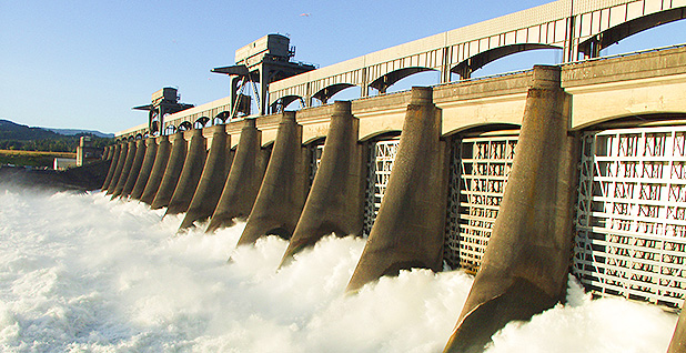 The spillway gates at Bonneville Dam on the Columbia River. Photo credit: Bonneville Power/Flickr