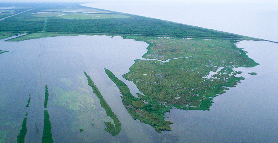 An aerial view of Louisiana's wetlands. Photo credit: Ryan Hagerty/Fish and Wildlife Service