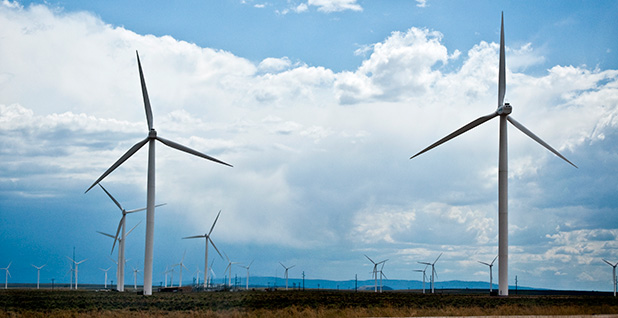 Wind farm in Wyoming. Photo credit: CGP Grey/Wikimedia Commons