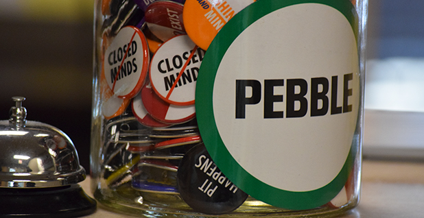 Pro-Pebble mine buttons. Photo credit: Dylan Brown/E&E News