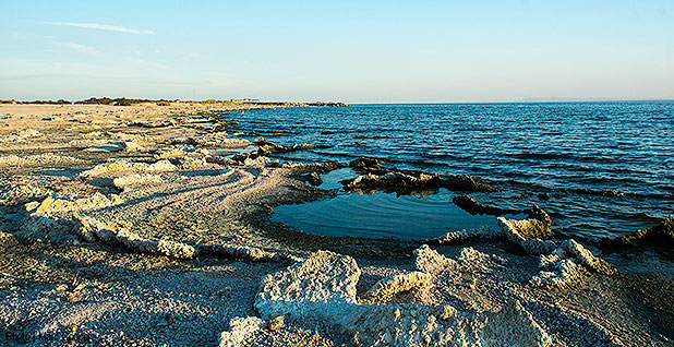 California's Salton Sea. Photo credit: Marc Cooper/Flickr