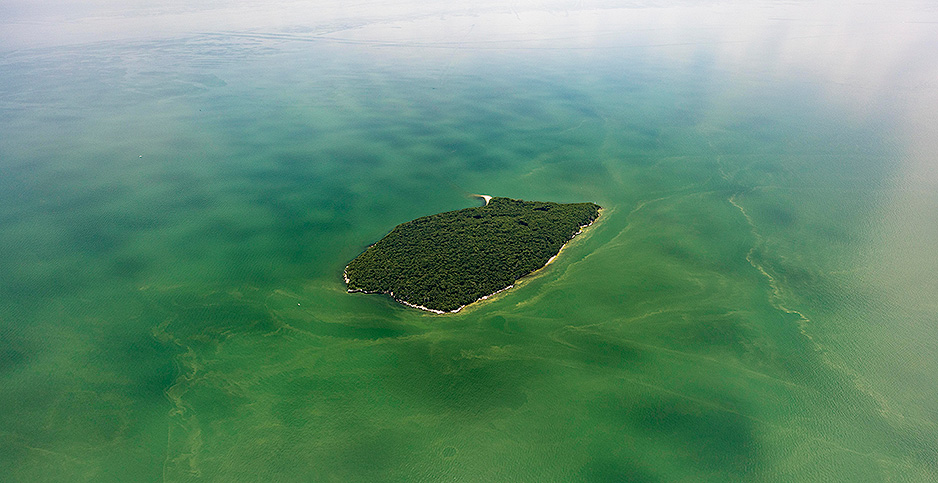 Algal blooms in Lake Erie. Photo credit: Zachary Haslick/Aerial Associates Photography, Inc./NOAA