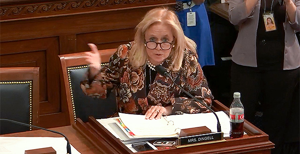 Rep. Debbie Dingell (D-Mich.). Photo credit: House Natural Resources Committee/YouTube