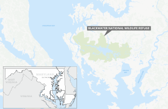 Blackwater National Wildlife Refuge.Map credit: Claudine Hellmuth/E&E News (graphic); 2019 © Google/SnazzyMaps(basemap)