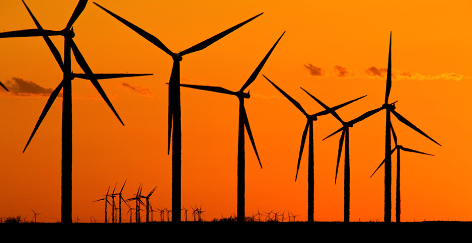 Texas wind farm. Photo credit: Richard Ellis/agefotostock/Newscom