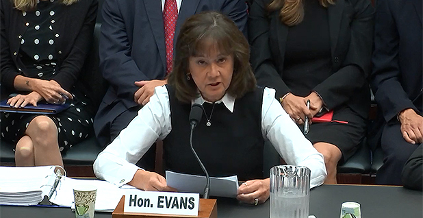 Karen Evans. Photo credit: House Energy and Commerce Committee