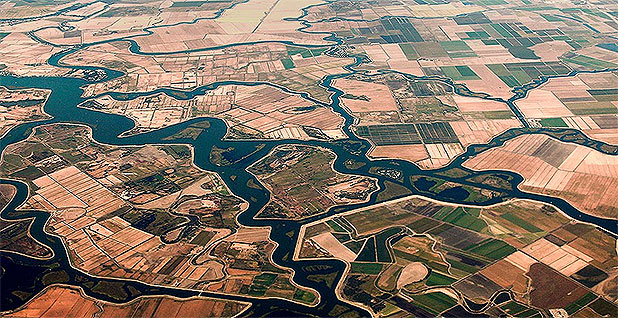 An aerial view of the Sacramento-San Joaquin River Delta. Photo credit: formulanone/Flickr
