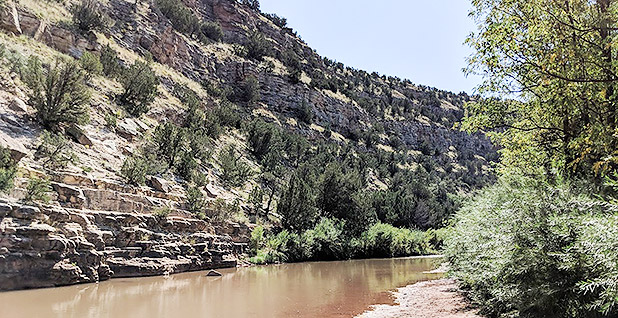 Pecos River in New Mexico. Photo credit: Fletchersparadox/Wikimedia Commons
