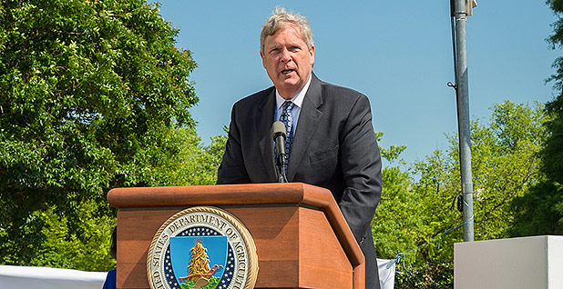 Tom Vilsack. Photo credit: Bob Nichols, courtesy of the Department of Agriculture.