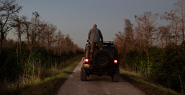 Thomas Aycock rides on top of his SUV in the Everglades Photo credit: Marco Bello/REUTERS/Newscom